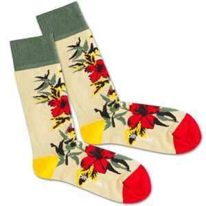 DillySocks Ponožky 'Dry Flower' béžová / žlté / zelená / červené vyobraziť