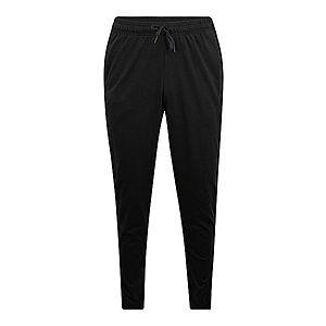 ADIDAS PERFORMANCE Športové nohavice 'E LIN T PNT SJ' čierna vyobraziť