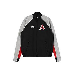 ADIDAS PERFORMANCE Športová bunda sivá vyobraziť
