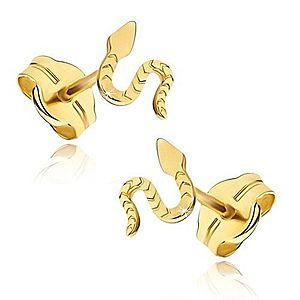 Náušnice zo žltého 14K zlata - lesklý plaziaci sa had, ryhovaný povrch GG17.05 vyobraziť