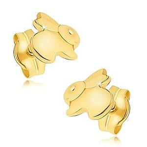 Zlaté náušnice 585 - zrkadlovolesklý skákajúci zajačik GG20.02 vyobraziť