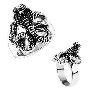 Mohutný oceľový prsteň, lesklé ramená, patinovaný had - kobra HH9.3 vyobraziť
