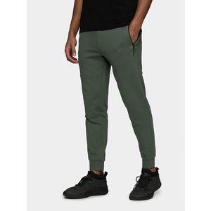 Pánske teplákové nohavice Wilfredo Leon x 4F vyobraziť