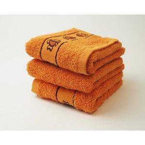Dobrý Textil Detský uterák s motívom 30x50 - Oranžová | 30 x 50 cm vyobraziť